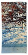 Winter In Peachland Hand Towel