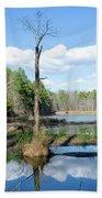 Winter Lake View Bath Sheet by George Randy Bass
