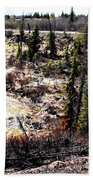 Winter Landscape Bath Towel