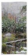 Winter On The Beaver Pond Bath Towel