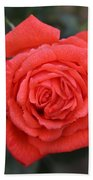 Winter Rose Bath Towel