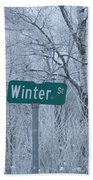Winter Street Bath Towel