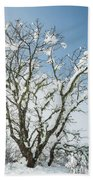 Winter Tree At Berry Summit Bath Towel