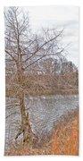 Winter Tree On Pond Shore Bath Towel