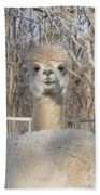 Winter White Alpaca Bath Towel