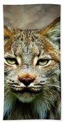Wise Bob Cat Bath Towel