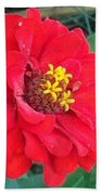 With Beauty As A Pure Red Rose Bath Towel