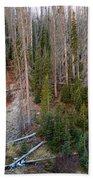 Wolf Creek Pass Forest Landscape Bath Towel