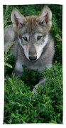 Wolf Pup Portrait Bath Towel