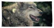Wolf Rock Bath Towel