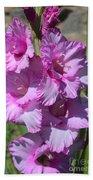 Wonderful Pink Gladiolus Bath Towel