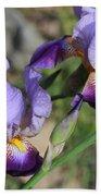 Wonderful Purple Irises Bath Towel