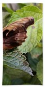 Wood Butterfly Hand Towel