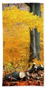 Wood Pile In Autumn Hand Towel