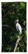 Wood Stork-out On A Limb Bath Towel