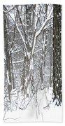 Woods In Winter Bath Towel