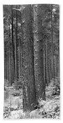 Woods In Winter, Slaley Bath Towel