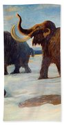 Wooly Mammoths Near The Somme River Bath Towel
