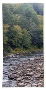 Worlds End State Park Loyalsock Creek Bath Towel
