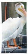 Wyoming Pelican Bath Towel