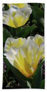 Yellow And White Tulips Flowering In A Garden Bath Towel