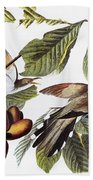 Yellow-billed Cuckoo Bath Towel