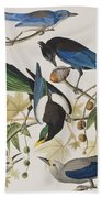 Yellow-billed Magpie Stellers Jay Ultramarine Jay Clark's Crow Bath Towel