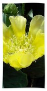 Yellow Bonnet, Cactus Bath Towel