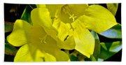 Yellow Jessamine At Pilgrim Place In Claremont-california Bath Towel
