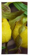 Yellow Lady's Slipper Bath Towel