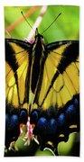Yellow Monarch Butterfly On Milkweed #2 Bath Towel