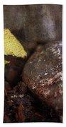 Yellow Mushroom Hand Towel