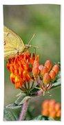 Yellow Sulphur Butterfly Bath Towel