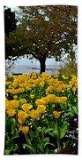 Yellow Tulips Of Fairhope Alabama Bath Towel