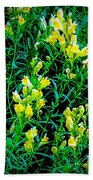 Yellow Wild Flowers In Late Summer Bath Towel