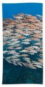 Yellowfin Goatfish Bath Towel