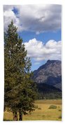 Yellowstone Landscape Bath Towel
