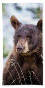 Young Black Bear Hand Towel