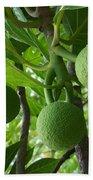 Young Breadfruit Bath Towel