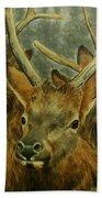 Young Elk Trio- Wapiti Bath Towel