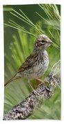 Young Lark Sparrow 2 Bath Towel