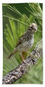Young Lark Sparrow 3 Bath Towel