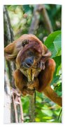 Young Red Howler Monkey Bath Towel
