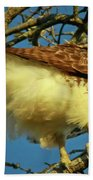 Young Red-tail Bath Towel