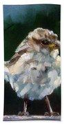 Young Sparrow Bath Towel
