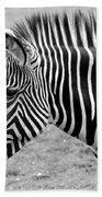 Zebra - Here It Is In Black And White Bath Towel