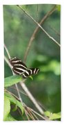 Zebra Longwing Butterfly About To Take Flight Bath Towel