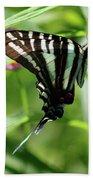 Zebra Swallowtail Butterfly In Green Bath Towel