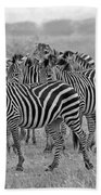 Zebras On The March Bath Towel