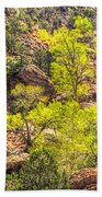 Zion National Park Small Tributary Of The Virgin River Bath Towel